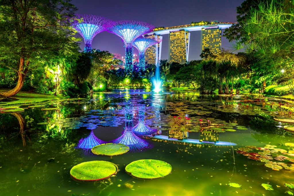 supertree grove at gardens by the bay-singapore